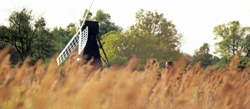 Wicken-Fen-Windmill-image-courtesy-of-Paul-Harris-Ps